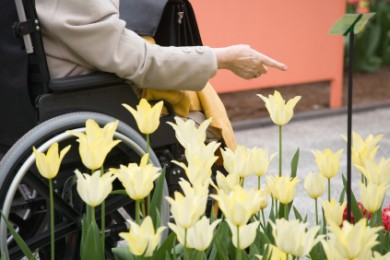 close up of person in wheelchair pointing near flowers