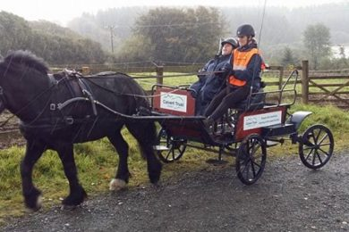 wheelchair user in a horse and carriage farm tour